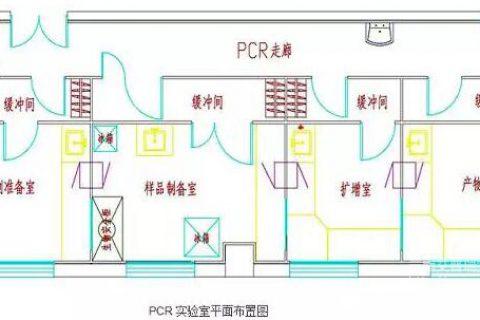 PCRbetway官网手机版介绍